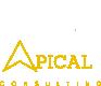 Apical Consulting – profesjonalne pośrednictwo pracy